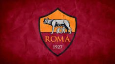 Roma'ya Irkçılık Soruşturması